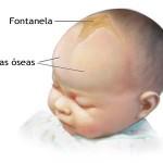 Fontanela kod beba