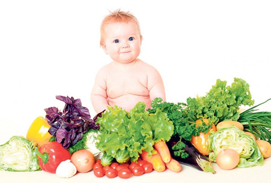nemlecna -hrana