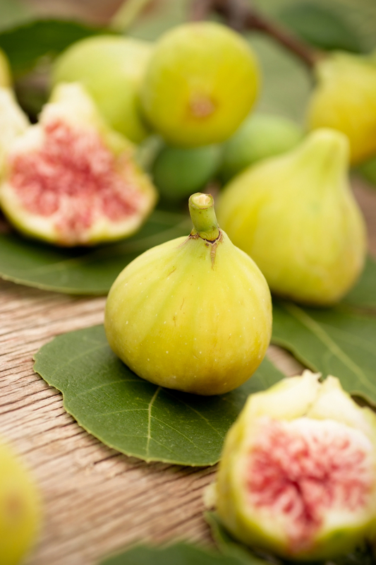 http://www.dreamstime.com/stock-image-fresh-figs-image6092581
