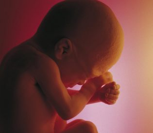 Kako se razvijaju bebina čula dok je još kod mame u stomaku