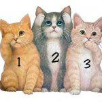TEST: Izaberite najsimpatičniju macu – Ona će vam otkriti poruku!