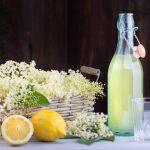 Lekovite moći zove: Ovako se pravi sok, med i čaj koji pomaže kod najtežih bolesti!